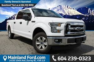2016 Ford F-150 XLT NO ACCIDENTS, LOCAL, LOW KM'S