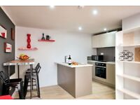 Luxury 1 bedroom apartment in Whitechapel dss with guarantor accepted