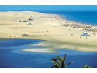 Christmas in delightful Gran Canaria, Canary Islands - Book now only £64.00 per night - 2 adults!!