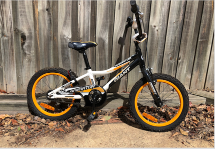 Giant Animator kid bike and extra bike for FREE