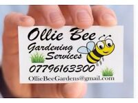 Gardening Services / Power Washing / Grass Cutting / Garden Maintenance