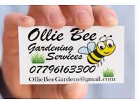 Gardening Services / Grass Cutting / General Garden Maintenance