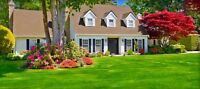 Reasonably priced lawn cutting & landscaping