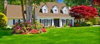 Reasonably priced professional lawn cutting & landscaping