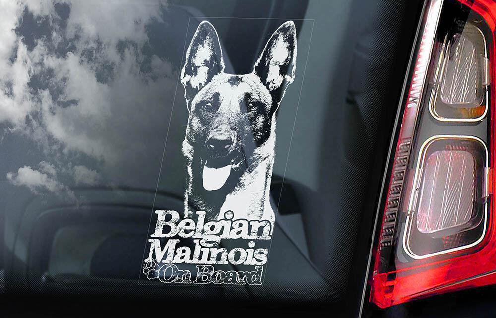 Car Window Sticker Mechelse Dog Sign Decal Belgian Malinois on Board V10