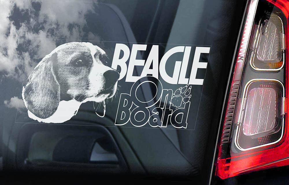English Hound Dog Window Bumper Sign Decal Gift Pet BEAGLE Car Sticker V01