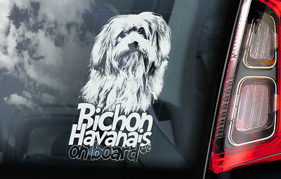 Bichon Sticker - Bichon Havanais on Board - Car Window Sticker - Havanese Frise Dog Decal - V01