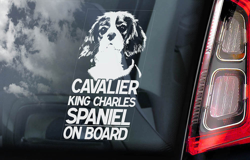 Cavalier Sticker Gift for Dog Lover Cavalier Decal King Charles Cavalier Vinyl Decal Window Decal Laptop Decal Bumper Sticker