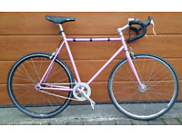 Pitango Custom Fixie Road Bike