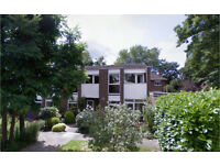 Blackheath/Lewisham SE13. Modern & Spacious 3 Bed Furnished House with Garden on Quiet Street