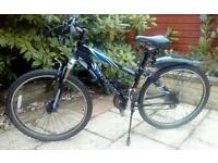 Ladies Giant bike ..free delivery