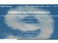 Website design and development £250 all inclusive.
