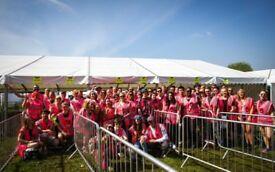 Volunteer Festival Photographer for My Cause UK
