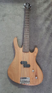 Washburn 5 String Bass guitar and Case