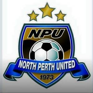 Soccer - Head Coach for 2017 North Perth Vincent Area Preview