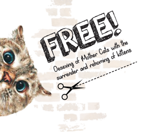 * FREE DESEXING OF MOTHER CATS- PLEASE READ BELOW *
