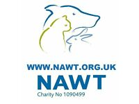 Temporary Charity Shop Manager - to start immediately 2/3 Months