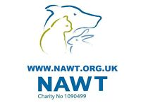 Shop Assistant needed for Friendly Animal Charity Shop