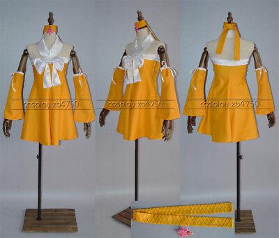 rden costume Kostüme set Cosplay dress Kleid Neu New Custom (Fairy Tail Kostüme)