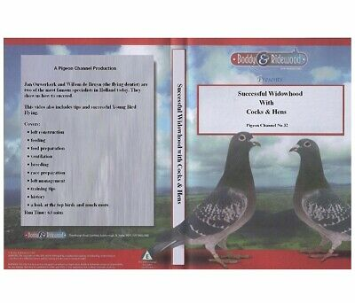 Racing Pigeon Dvd Successful Widowhood With Cocks & Hens Dvd