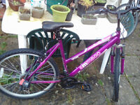 Nearly NEW Ammaco Ladies Mountain Bike
