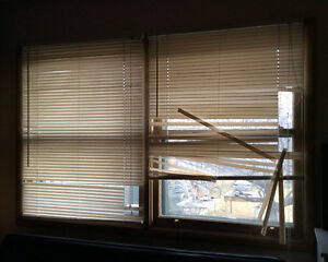 **FREE mini blinds for DIYer