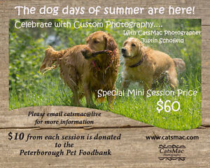 Pet Photography & Pet Pantry Food Bank Fund Raiser