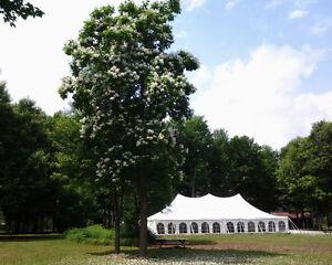Apportez votre vin, fête,party,salle,anniversaire,Mariage Saint-Hyacinthe Québec image 1