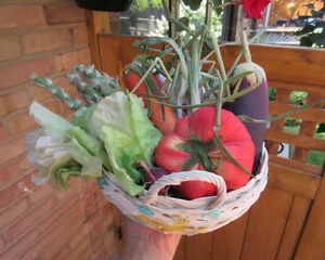 Kitchen Table Display - Material FRUIT & VEGETABLES with Basket