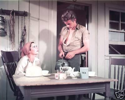 "Elizabeth Taylor / James Dean ""Giant""  5x7  FREE US SHIPPING"