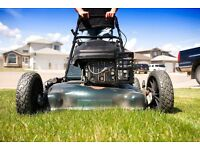 Grass cut hedges trimmed general clean up