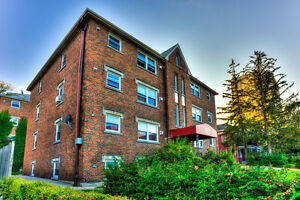 1 Bedroom Apartment Available December 1st or 15th Kitchener / Waterloo Kitchener Area image 1