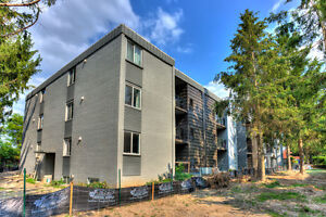 1 BEDROOM CLOSE TO UPTOWN AVAILABLE JAN 15TH Kitchener / Waterloo Kitchener Area image 5