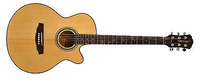 Fretlight FG-507 Acoustic Guitar (B-Stock) (NS) on Rummage