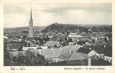 Dej Des Romania Scenic View Antique Postcard J51134