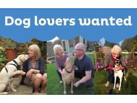 Become a dog Host for Barking Mad