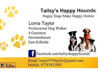 Dog Walking & Cat Sitting Service East Kilbride