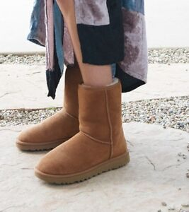 UGGS classic Short II Boot - Brand New - Chestnut (size 7)