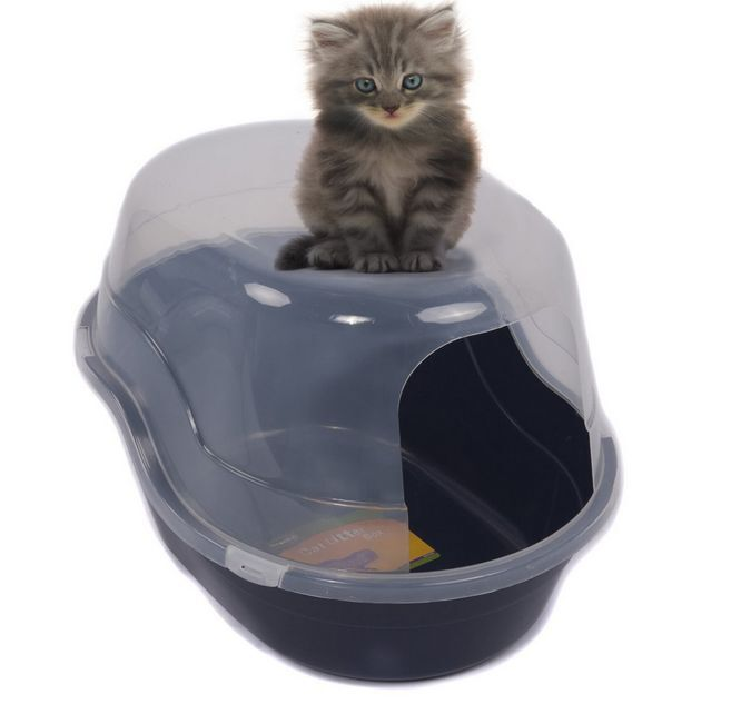25-inch Cat Litter Box Extra Large Blue,removable Cover,s...