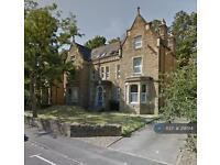 Studio flat in Oakroyd Villas, Bradford, BD8