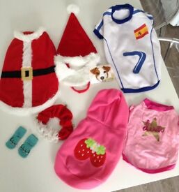 DOG CLOTHES BUNDLE jumpers Christmas, Spain, strawberry, diva. Outfits