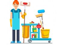 Domestic cleaner, general and pub cleaner