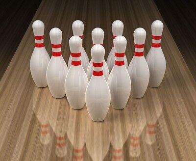 Bowling Pin Weight (Backyard Fowling Pins - Real AMF Full Weight (Case of)
