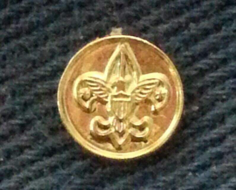 BSA DISTRICT COMMITTEE DEVICE PIN - 1993~PRESENT - TENDERFOOT IN CENTER  A01597