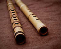 Looking for Dizi/Bamboo Flute lessons