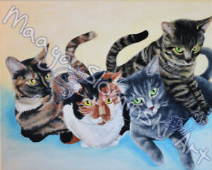 Custom Pet Portraits  - paintings, drawings, illustrations
