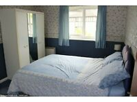 Single Room to Rent in Shared House in Rose Avenue, Morden.