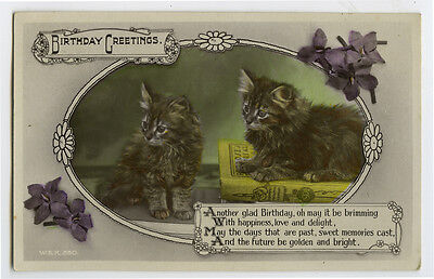 1920s Kittens CUTE FLUFFY CATS Tiger Tabby Long Hair photo postcard