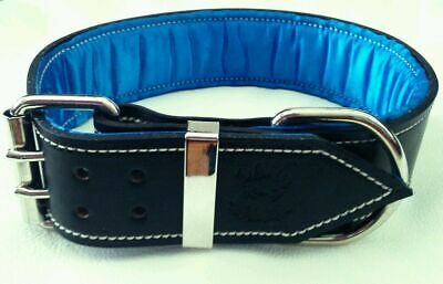 Black Leather Dog Collar with Satin Inner Lining & Nickel Fittings (4 sizes)
