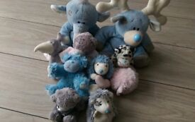 8 small blue nose friend and 2 big